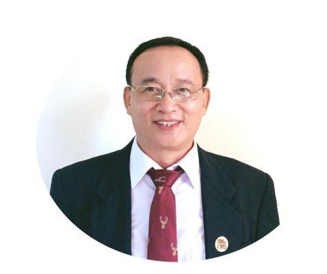 chuyên gia Dương Mạnh Hùng - Tư vấn, cố vấn dự án, Luật