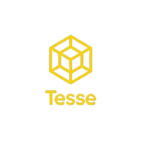 Đồng hành cùng cố vấn khởi nghiệp - Tesse.io