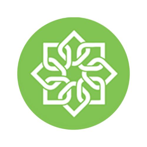 cố vấn khởi nghiệp việt nam - viet startup mentoring - logo